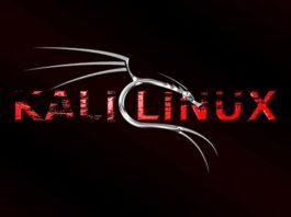 Инструменты Kali Linux