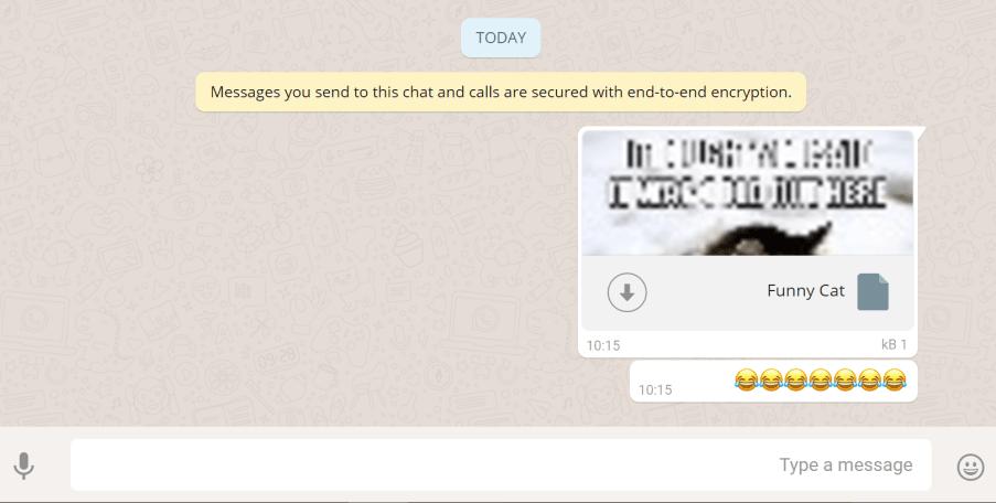Зараженный документ получен жертвой whatsapp